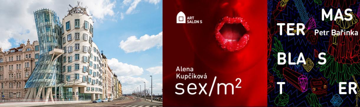GALERIE ART SALON S