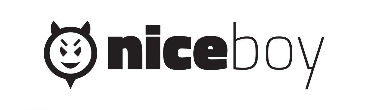 Výsledek obrázku pro niceboy logo