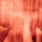NAUZEA ORCHESTRA - Der Sonnenstaat